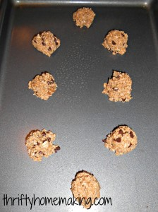 fourless oatmeal chocolate chip cookies