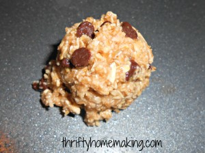 oatmealcookies2 300x224 Flourless Oatmeal Chocolate Chip Cookies