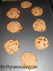 oatmealcookies3 224x300 Flourless Oatmeal Chocolate Chip Cookies