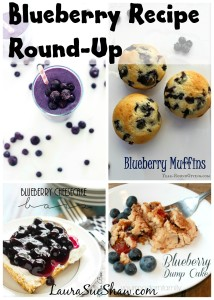 Blueberry Recipe Round-Up