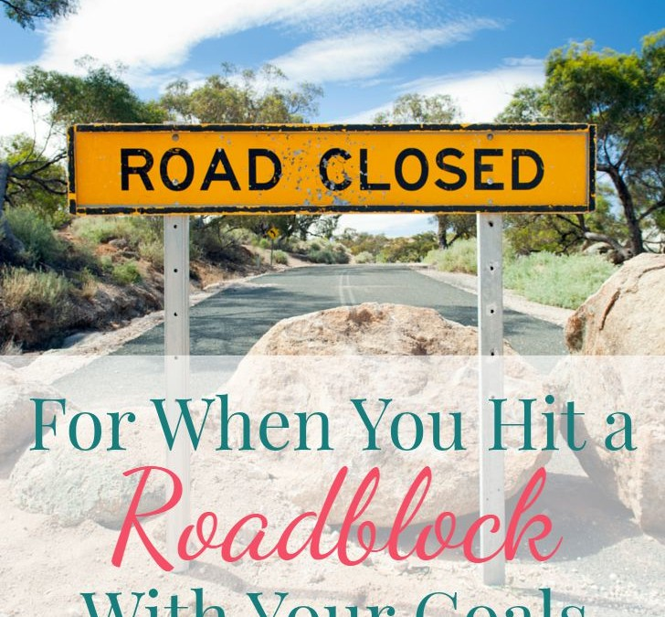 For When You Hit a Roadblock With Your Goals