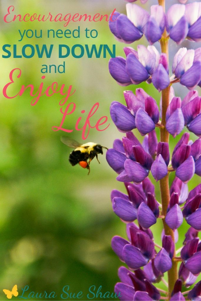 We live in such a fast-paced world. Do you ever wish you could slow down and enjoy life more? Here is some encouragement to help you do just that.