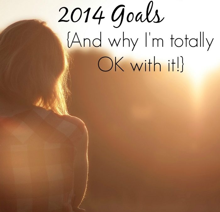Lessons Learned from not Reaching my 2014 Goals {And why I'm totally OK with it}